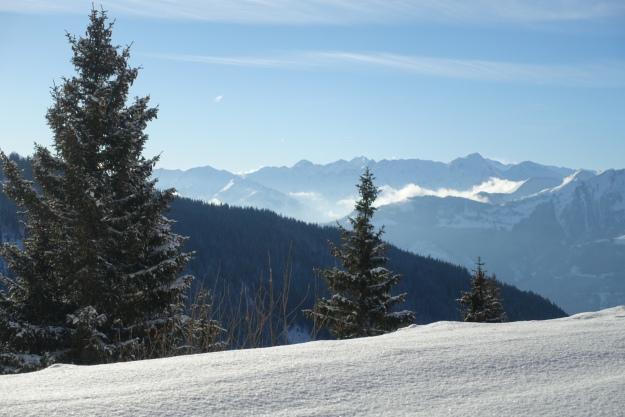 Again view from Pinzgauer hut